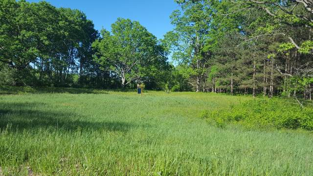 5200 E Sippy Road, Custer, MI 49405 (MLS #20035119) :: JH Realty Partners