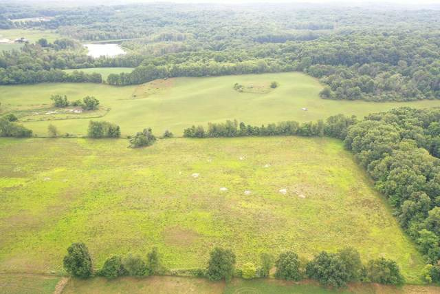 Parcel 2 Red Pearl Lane, Middleville, MI 49333 (MLS #20035679) :: Ginger Baxter Group