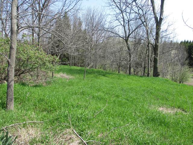 Lot 38 W Hansen Road, Scottville, MI 49454 (MLS #20036003) :: Ginger Baxter Group