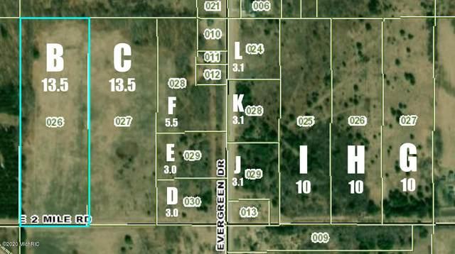 V/L N Evergreen Drive Parcel F, White Cloud, MI 49349 (MLS #20036323) :: JH Realty Partners