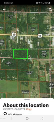 V/L 40 Acres Amber Twp, Ludington, MI 49431 (MLS #20036841) :: Ginger Baxter Group