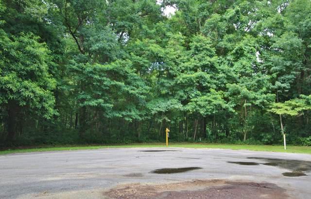 17304 Limberlost Road, Three Rivers, MI 49093 (MLS #20037124) :: Ron Ekema Team