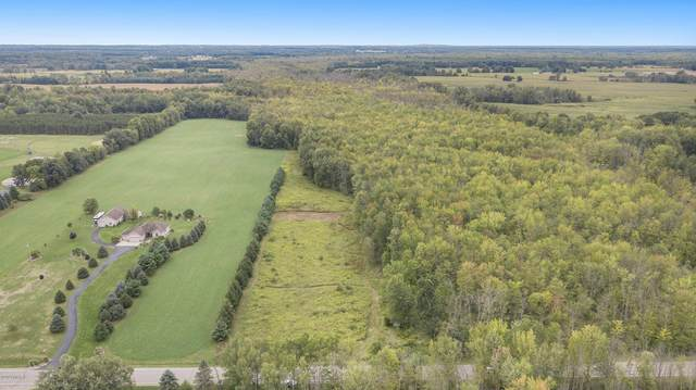 Parcel A N County Line Road, Blanchard, MI 49310 (MLS #20037876) :: Ginger Baxter Group