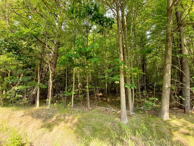 V/L Parcel A Bossett Rd, Ravenna, MI 49451 (MLS #20038268) :: Keller Williams RiverTown