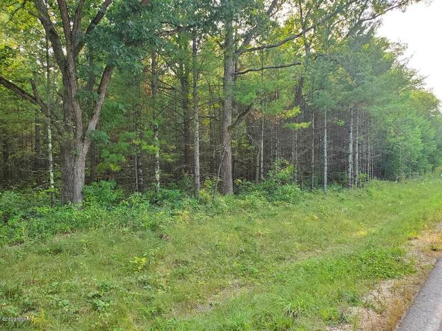 PAR A Nelson, Chase, MI 49623 (MLS #20038505) :: JH Realty Partners