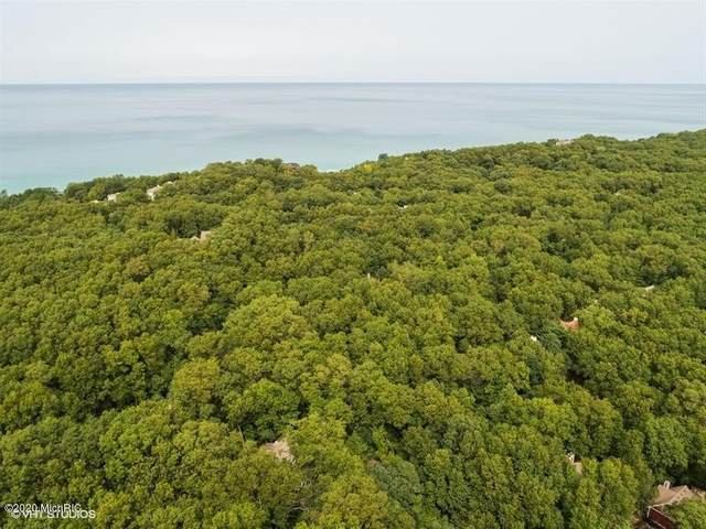 18657 Forest Beach Drive, New Buffalo, MI 49117 (MLS #20038634) :: JH Realty Partners