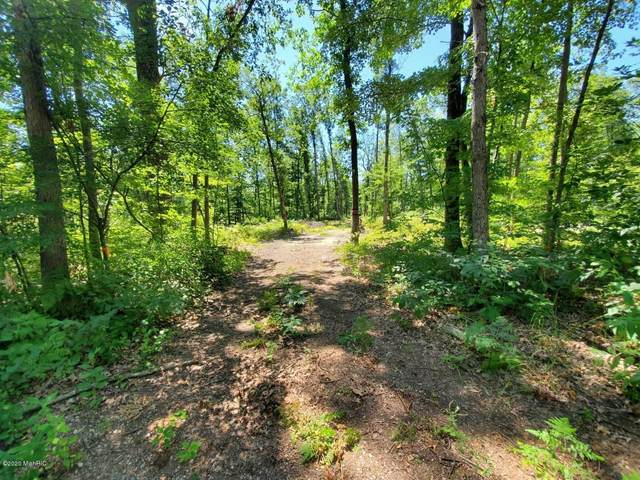 0 Willow St Parcel A, White Cloud, MI 49349 (MLS #20038998) :: CENTURY 21 C. Howard