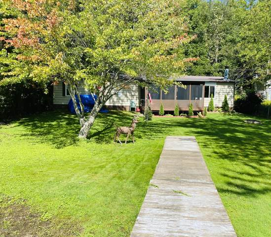 12364 N Sherman Lake Drive, Augusta, MI 49012 (MLS #20039010) :: Ginger Baxter Group