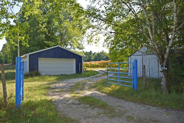 5123 W Fisher Road, Ludington, MI 49431 (MLS #20039410) :: Ron Ekema Team