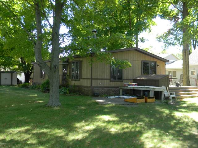 11045 Birch Park, Stanwood, MI 49346 (MLS #20039546) :: Your Kzoo Agents