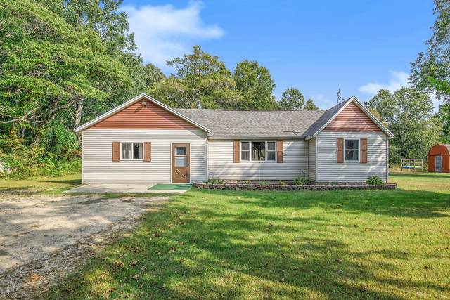5159 118th Avenue, Fennville, MI 49408 (MLS #20039553) :: Ron Ekema Team
