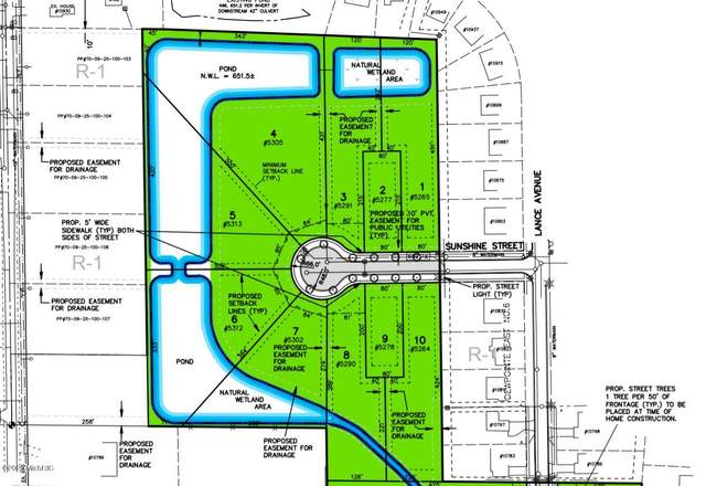 5278 Sunshine Street Lot 9, Allendale, MI 49401 (MLS #20039825) :: JH Realty Partners