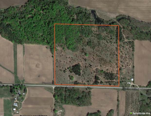 2478 E Madison Road, Hart, MI 49420 (MLS #20040170) :: JH Realty Partners