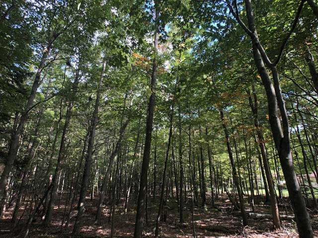 Lot 99 Fox Farm Road, Manistee, MI 49660 (MLS #20040721) :: Deb Stevenson Group - Greenridge Realty