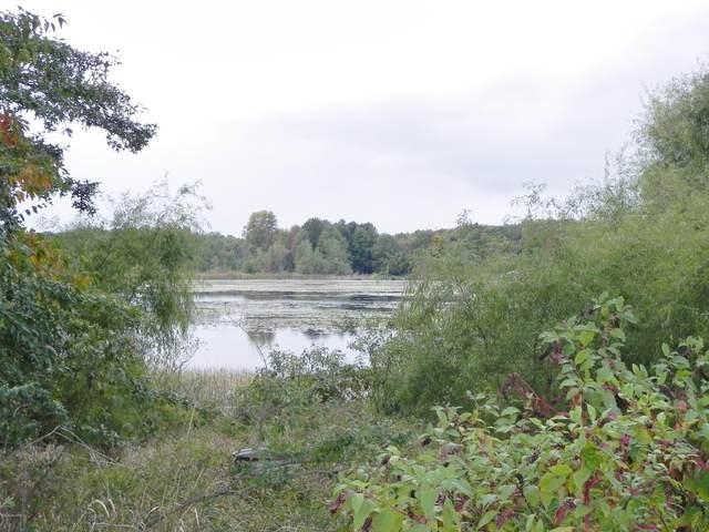VL Washburn Lake Lane, Colon, MI 49040 (MLS #20041508) :: Jennifer Lane-Alwan