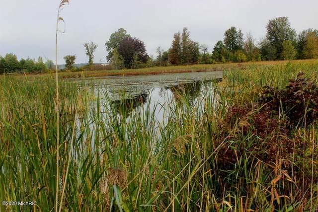 --- Leaf Lane, Coldwater, MI 49036 (MLS #20041736) :: Keller Williams RiverTown