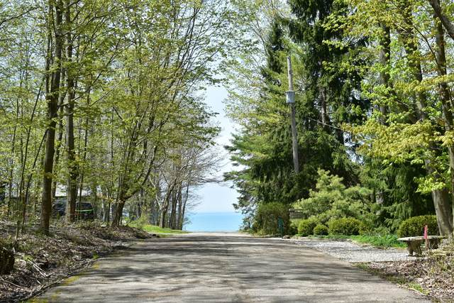 Lot 16 Lake View Terrace, South Haven, MI 49090 (MLS #20042411) :: Keller Williams RiverTown