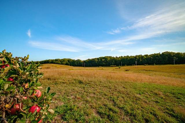 Vineyard View Road Lot #18, Manistee, MI 49660 (MLS #20042988) :: Keller Williams RiverTown