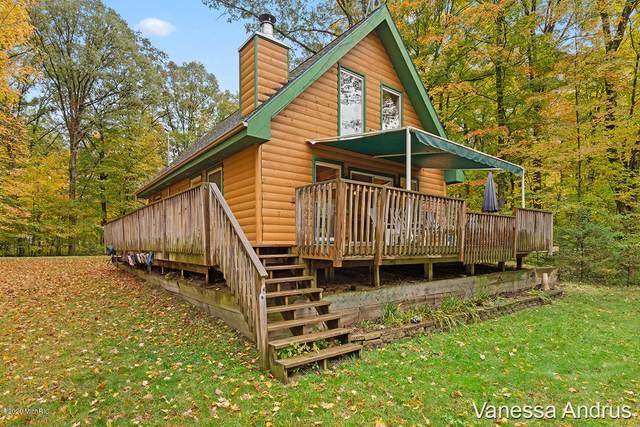 9045 Agawa Trail, Howard City, MI 49329 (MLS #20043098) :: Keller Williams RiverTown