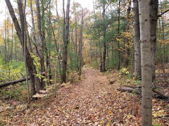 3 Vac Acres Winter Road, Walkerville, MI 49459 (MLS #20043197) :: CENTURY 21 C. Howard