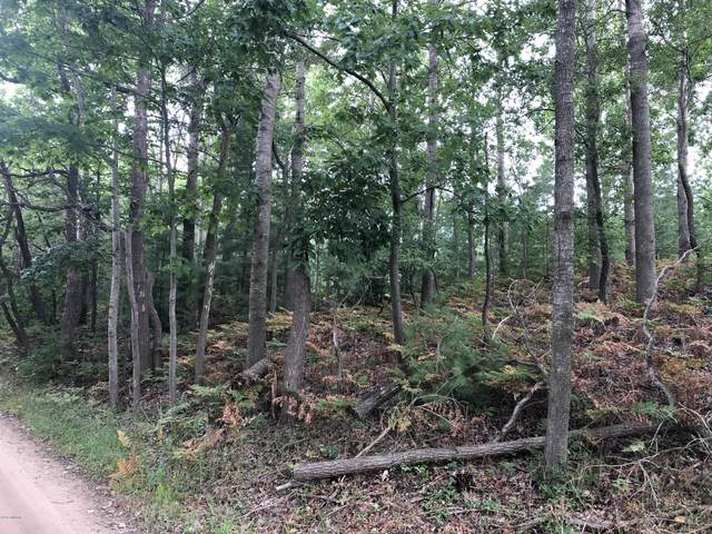 Lot 2 Harrison Road, Mears, MI 49436 (MLS #20043319) :: Jennifer Lane-Alwan