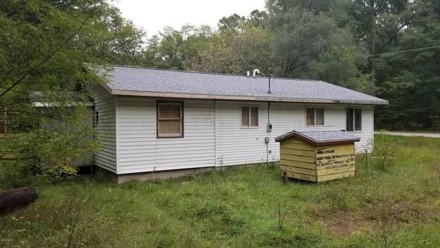 Address Not Published, Fountain, MI 49410 (MLS #20043722) :: Deb Stevenson Group - Greenridge Realty