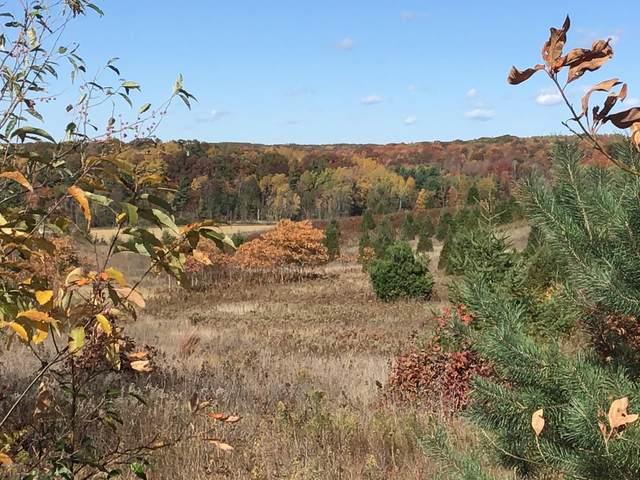 66 Acres N 144th Avenue, Walkerville, MI 49459 (MLS #20043936) :: Deb Stevenson Group - Greenridge Realty