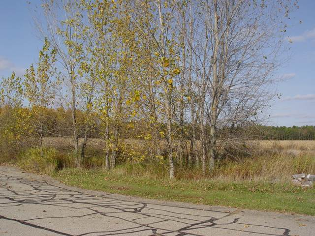 206 Jambrial Drive, Hastings, MI 49058 (MLS #20044526) :: Jennifer Lane-Alwan