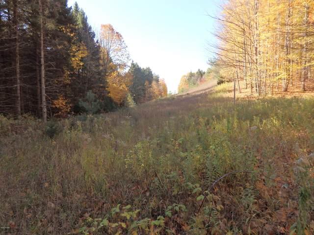 Chief Rd, Bear Lake, MI 49614 (MLS #20045504) :: Deb Stevenson Group - Greenridge Realty