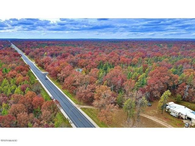 Highway 10, Baldwin, MI 49304 (MLS #20046214) :: Deb Stevenson Group - Greenridge Realty