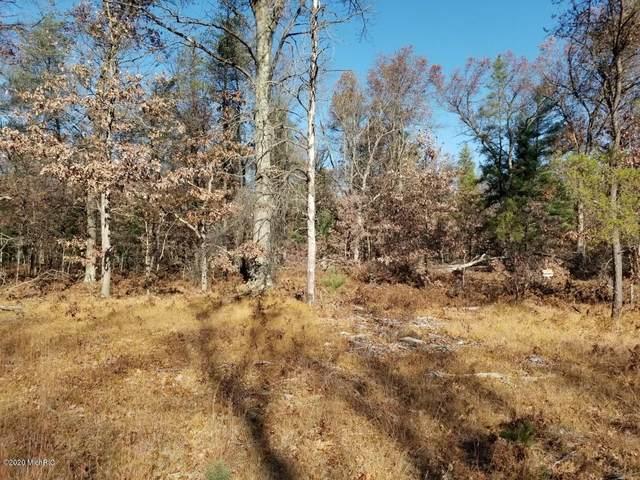 5633 S Twin Creek Road, Baldwin, MI 49304 (MLS #20046304) :: Deb Stevenson Group - Greenridge Realty