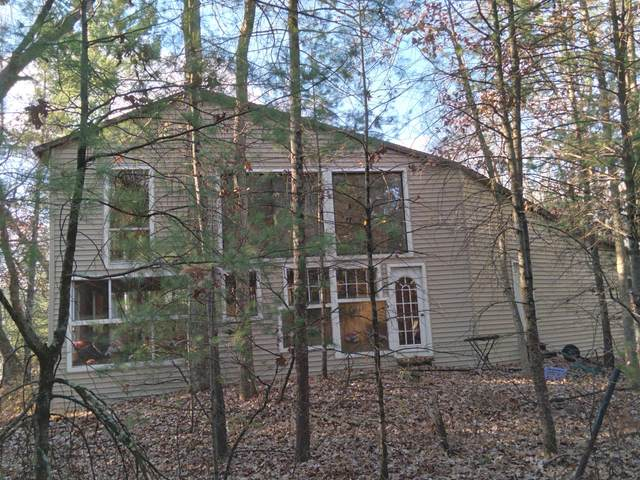 3125 Oak Valley Drive, Hamilton, MI 49419 (MLS #20047046) :: Deb Stevenson Group - Greenridge Realty