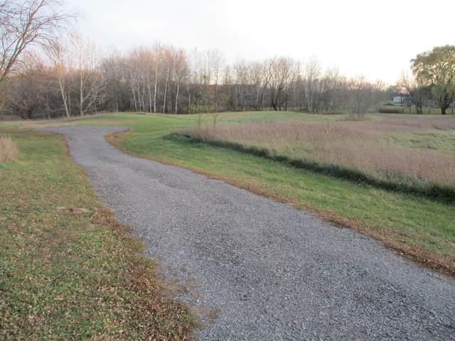 Address Not Published, Stanton, MI 48888 (MLS #20047163) :: CENTURY 21 C. Howard