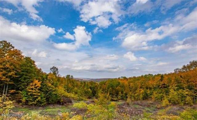 High Pines Trail Lot 3, Boyne City, MI 49712 (MLS #20047218) :: Keller Williams Realty | Kalamazoo Market Center
