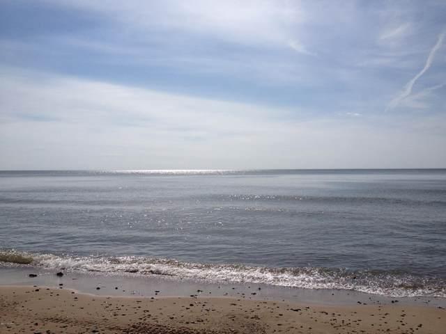 83 E Beach Drive, South Haven, MI 49090 (MLS #20047228) :: Deb Stevenson Group - Greenridge Realty