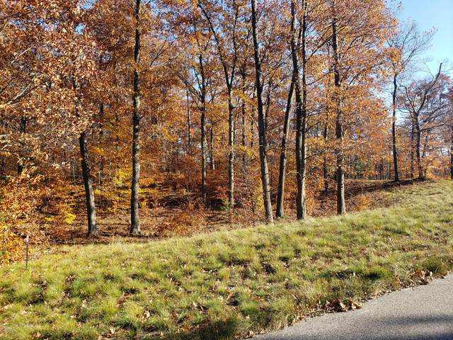 20 - Lot Novadoc Boulevard, Mears, MI 49436 (MLS #20047369) :: Deb Stevenson Group - Greenridge Realty