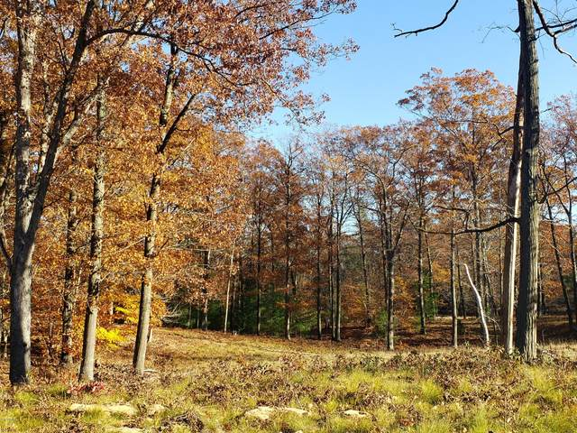 21 - Lot Novadoc Boulevard, Mears, MI 49436 (MLS #20047370) :: Jennifer Lane-Alwan