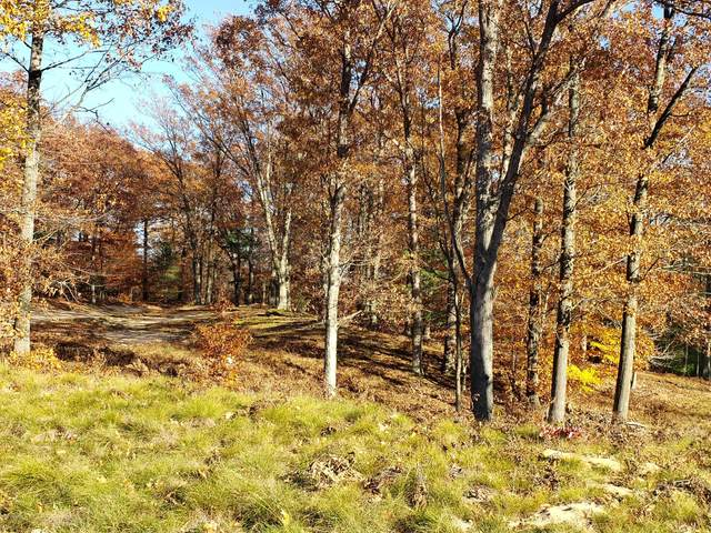 22 - Lot Novadoc Boulevard, Mears, MI 49436 (MLS #20047371) :: Deb Stevenson Group - Greenridge Realty