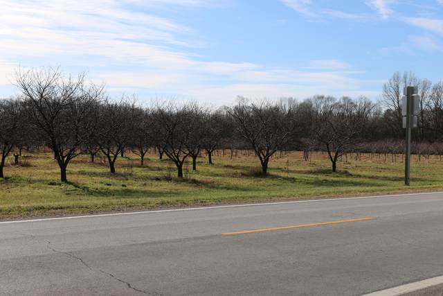 M 152 Hwy, Dowagiac, MI 49047 (MLS #20047990) :: Deb Stevenson Group - Greenridge Realty