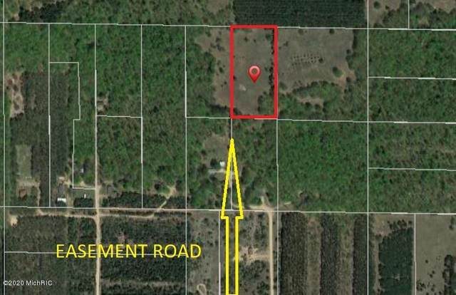 5 Acres Trail's North Road, Beulah, MI 49617 (MLS #20049646) :: CENTURY 21 C. Howard
