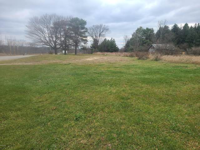 5163 S Sheridan Road, Sheridan, MI 48884 (MLS #20049772) :: Keller Williams Realty | Kalamazoo Market Center