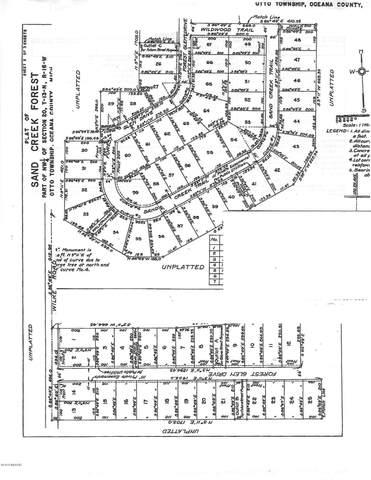 39 Sand Creek Trail, Rothbury, MI 49452 (MLS #20049970) :: Keller Williams Realty | Kalamazoo Market Center