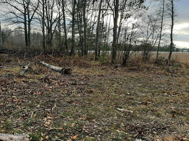 00 Us10 Lot 1, Hersey, MI 49639 (MLS #20050460) :: Your Kzoo Agents