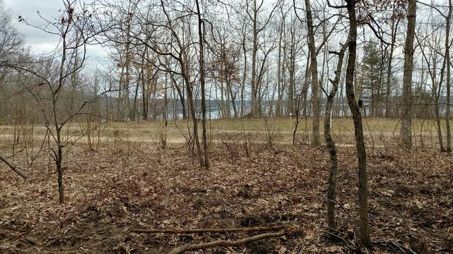 Lot 2 42nd St., Allegan, MI 49010 (MLS #20051510) :: CENTURY 21 C. Howard