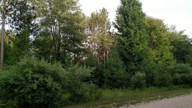 N Pine Ridge Drive 52 & 53, Ludington, MI 49431 (MLS #20051681) :: JH Realty Partners