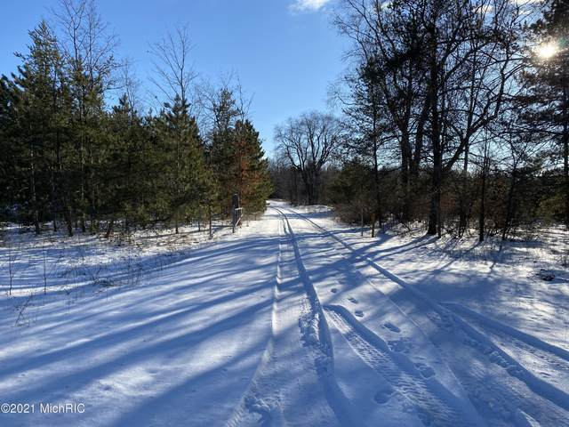 Glovers Lake Road, Bear Lake, MI 49614 (MLS #21000742) :: CENTURY 21 C. Howard