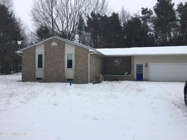 4081 W Dewey Road, Ludington, MI 49431 (MLS #21001300) :: CENTURY 21 C. Howard