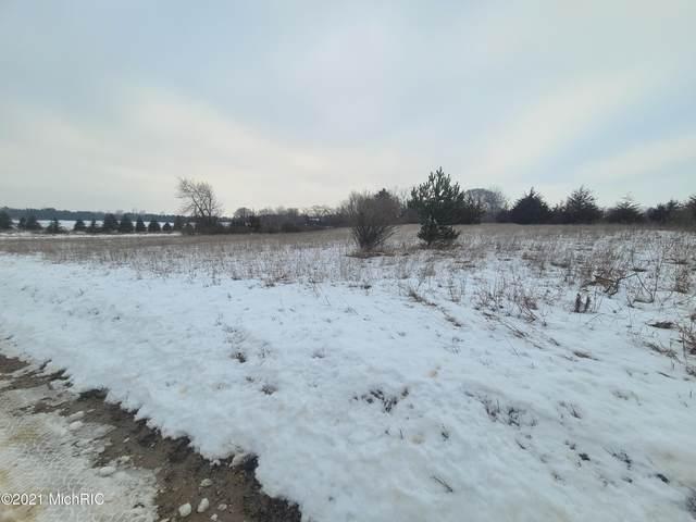 Cutler Road, Six Lakes, MI 48886 (MLS #21001500) :: Jennifer Lane-Alwan