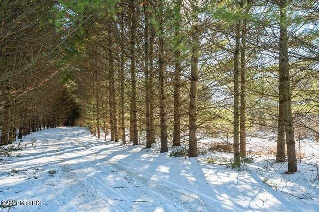 Parcel B Winding Pines Parkway, Niles, MI 49120 (MLS #21002359) :: Your Kzoo Agents