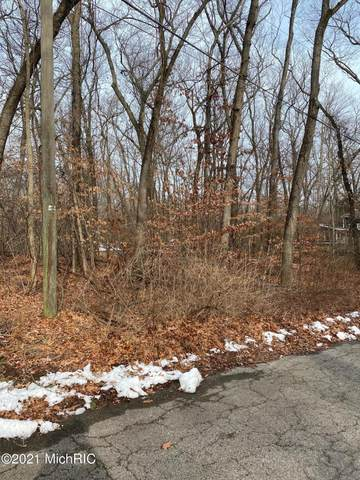 Lot B Comanche Trail, New Buffalo, MI 49117 (MLS #21002402) :: JH Realty Partners